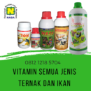 Vitamin Ikan Patin Super